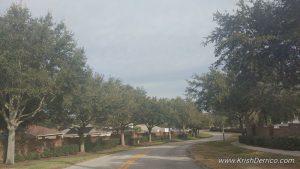 Johns Lake Estates Neighborhood