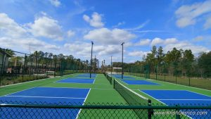 tennis courts at the palms of serenoa